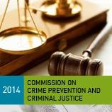 CCPCJ14_158x158_criminalJustice
